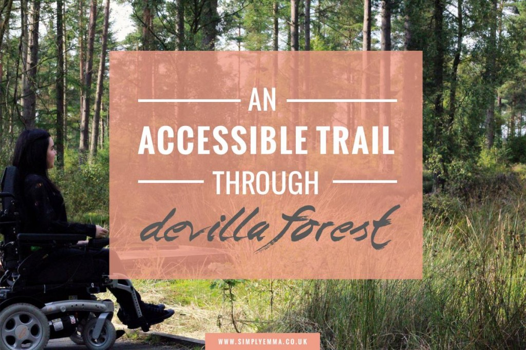 An Accessible Trail Through Devilla Forest
