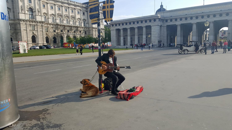 Vienna Photo Diary street performer