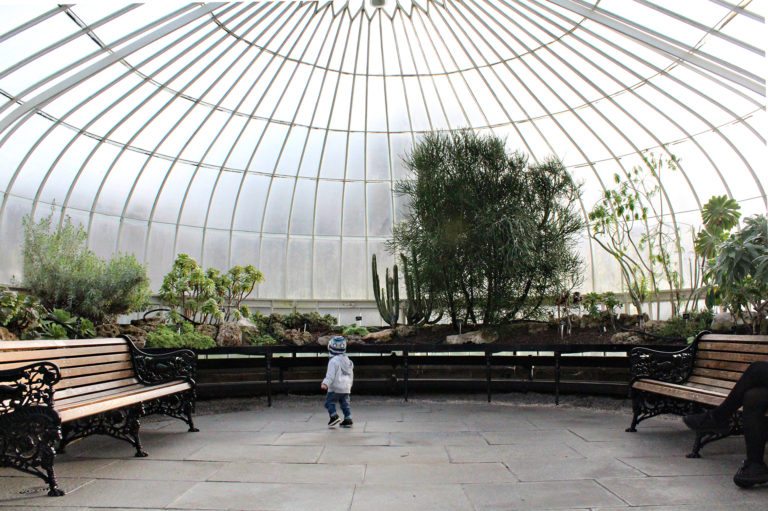 Glasgow Botanic Gardens wheelchair access
