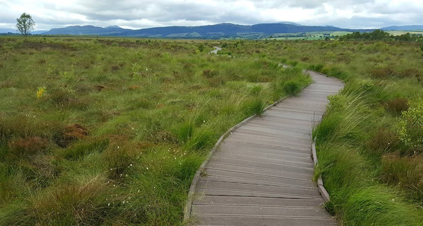 Accessible Scottish Walks: Flanders Moss