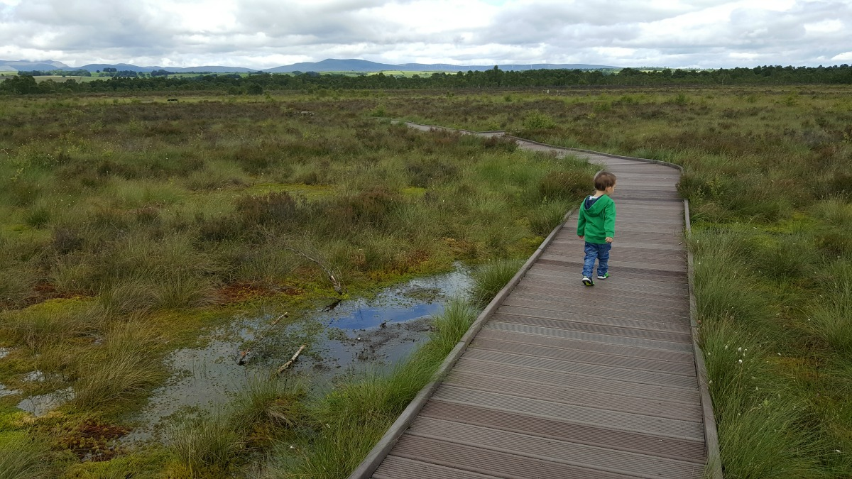 Accessible Scottish Walks Flanders Moss National Nature Reserve
