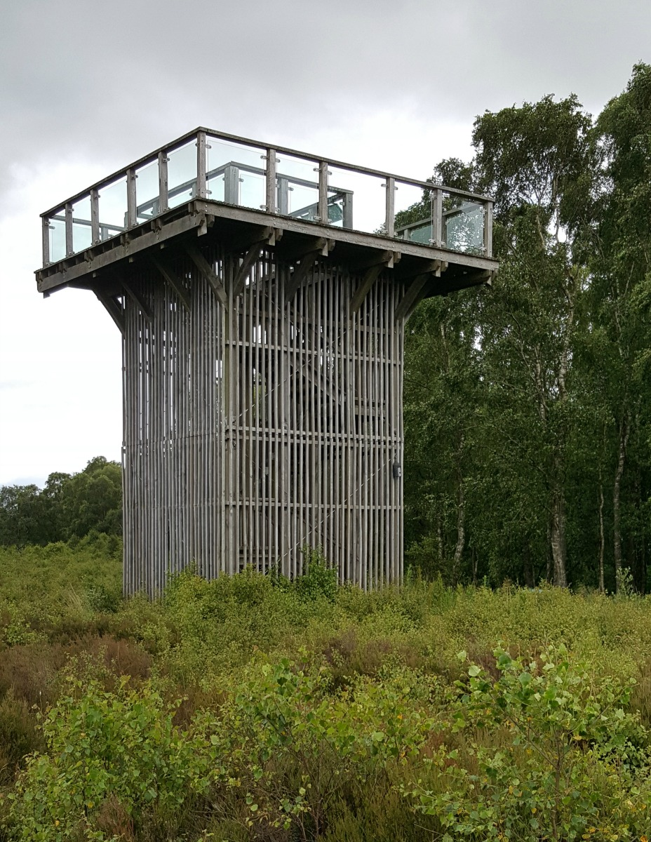 Flanders Moss National Nature Reserve Viewing Tower