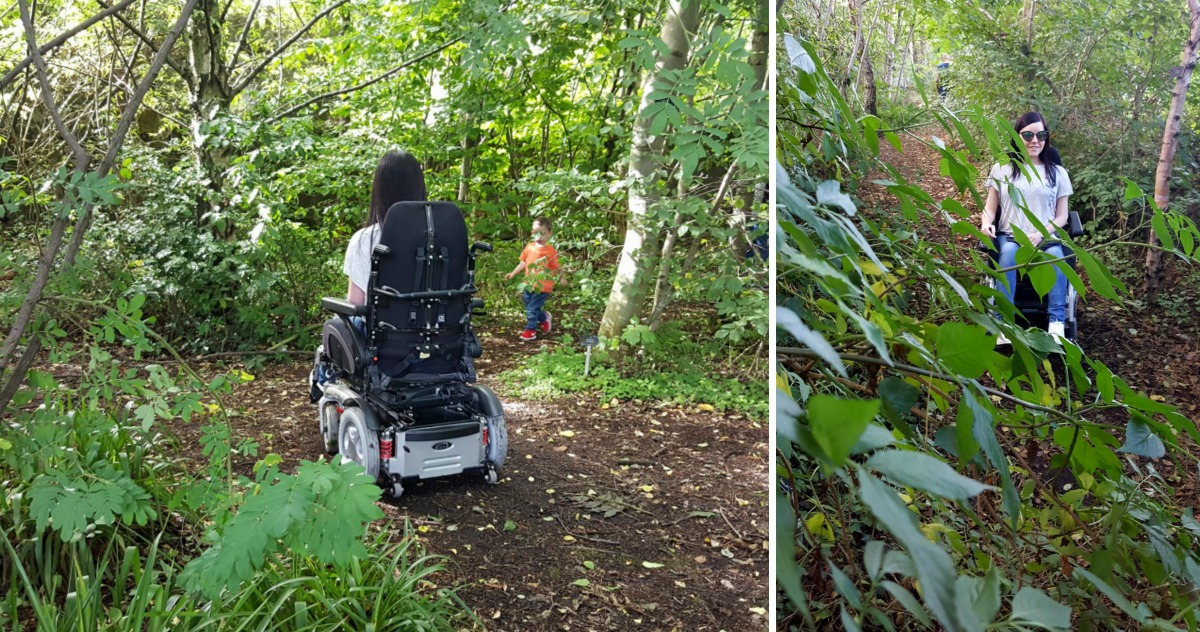 royal-botanic-garden-edinburgh-native-woodland-wheelchair-accessible