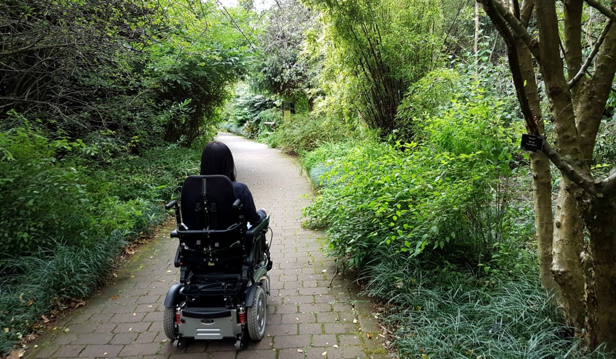 Guest Post: Walking vs Wheelchair