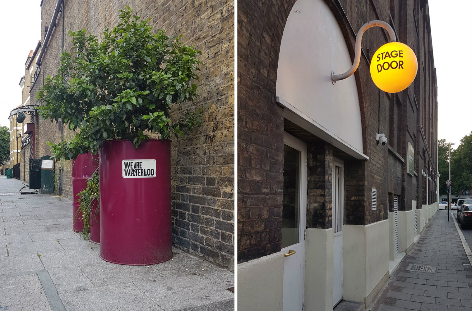 london-photo-diary-waterloo-street-plants