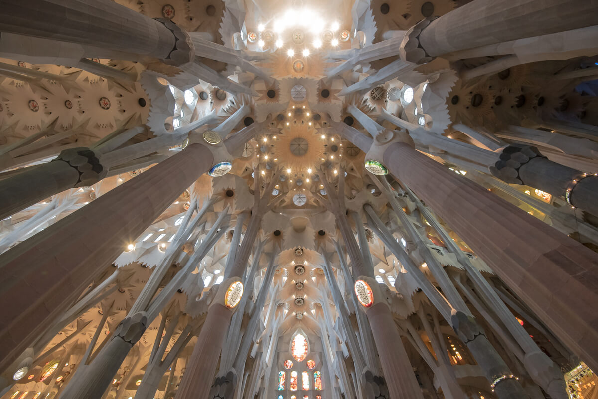 Favourite Accessible Things To Do In Barcelona: The stunning ceiling inside the Sagrada Família.