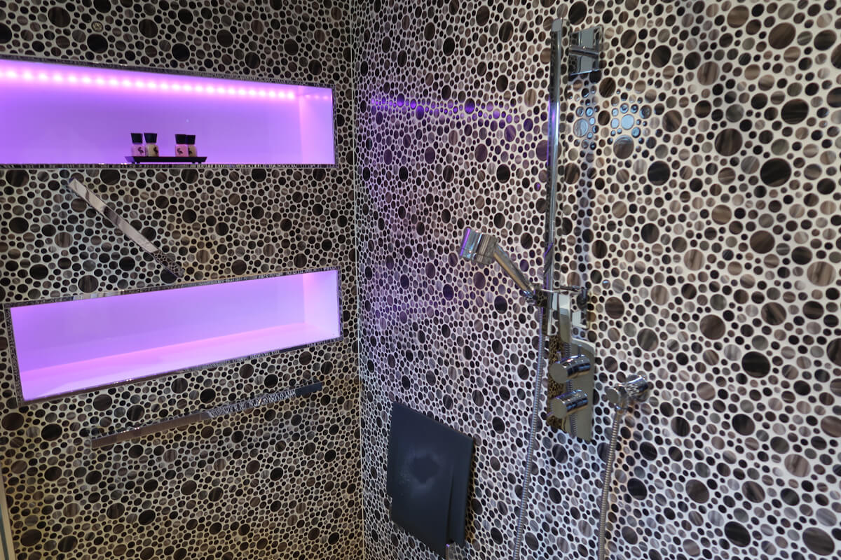 The roll-in shower in the accessible bathroom.