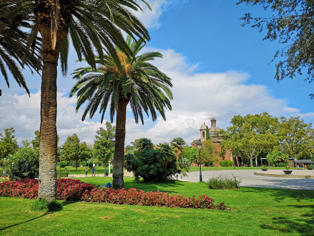 Palm trees, flowers and blue sky in Parc de la Ciutadella Barcelona