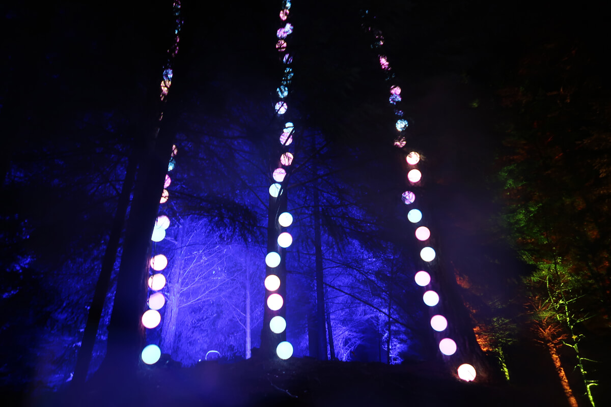 Multi-coloured giant ball lights hanging from the trees.