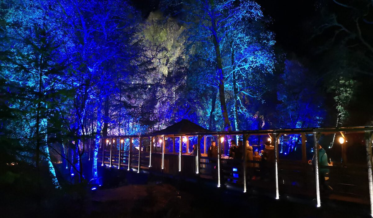 The Enchanted Forest 2018 | A Magical Show And Wheelchair Accessibility Review
