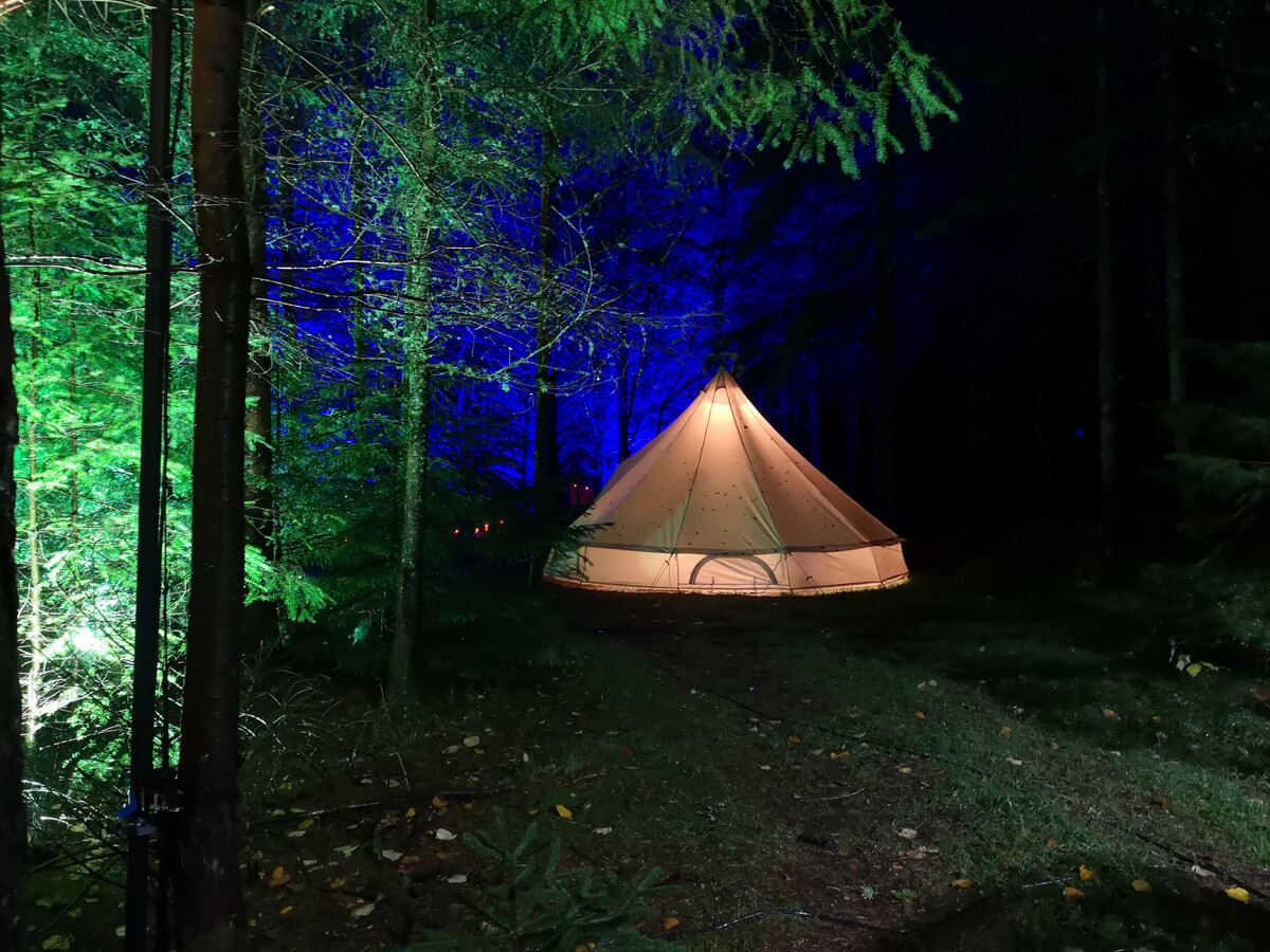 Green lit up trees with a tepee in the middle of the forest.