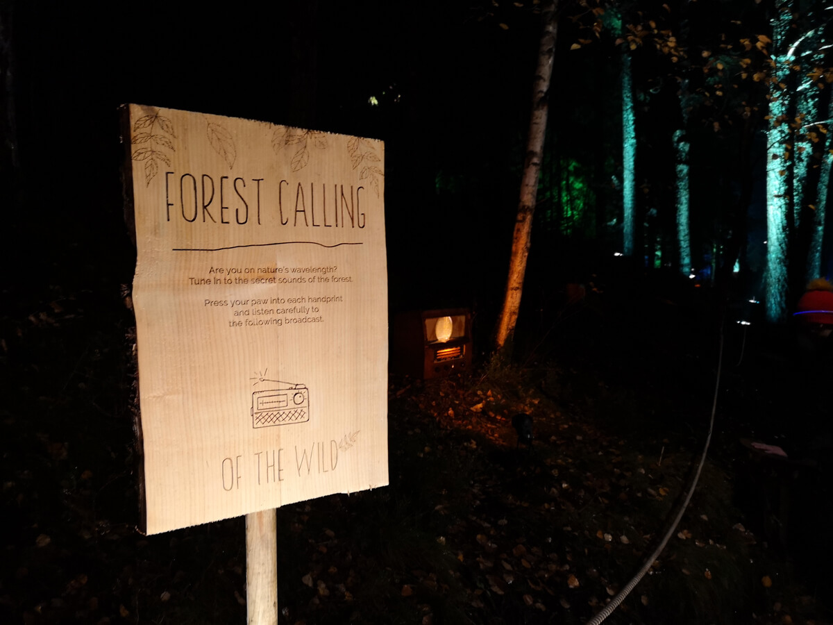 A wooden sign with the words 'Forest Calling'