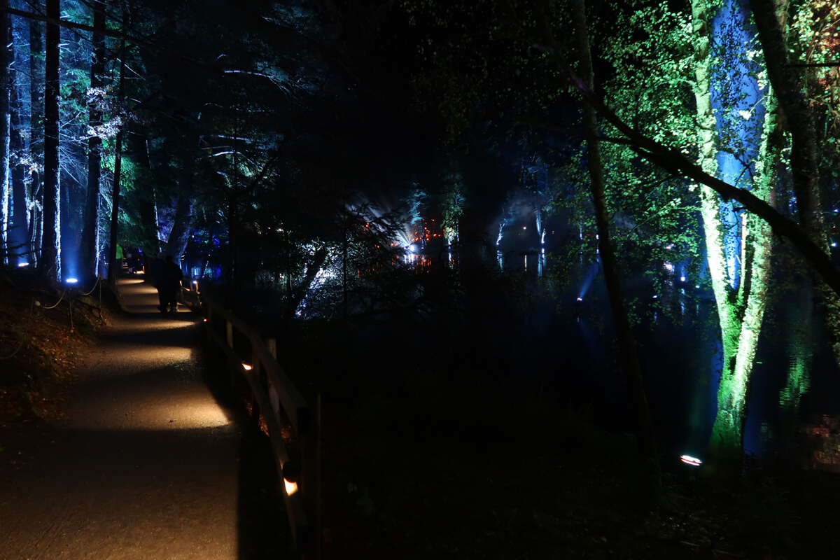 A lit up pathway surrounded by green and blue lit up trees.