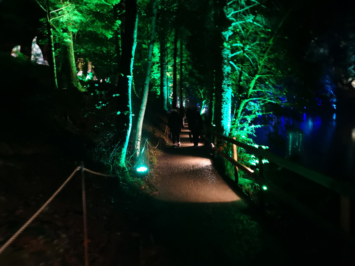 A lit up pathway surrounded by green lit up trees.