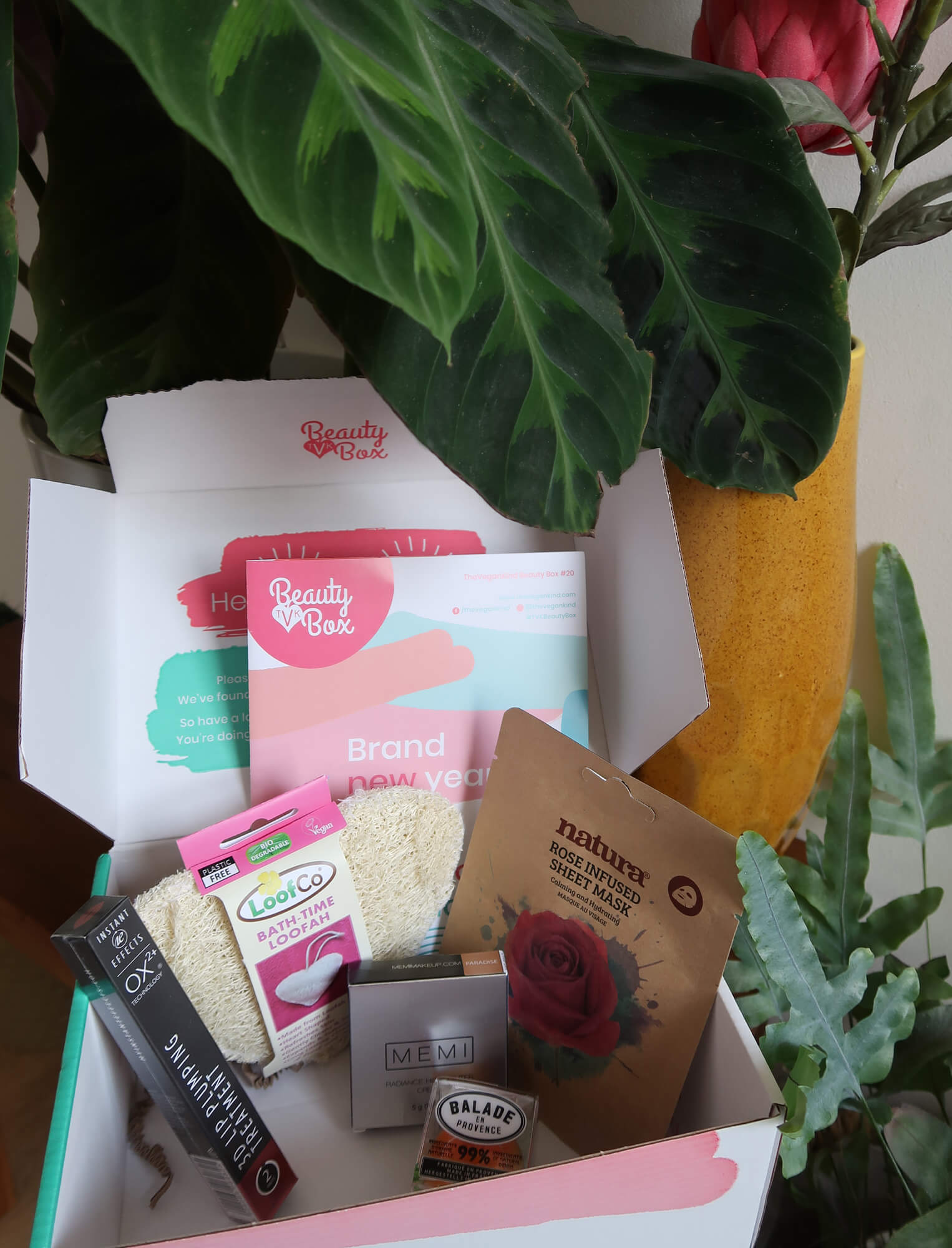 The contents of TheVeganKind beauty box. The box is sitting surrounded by green plants.
