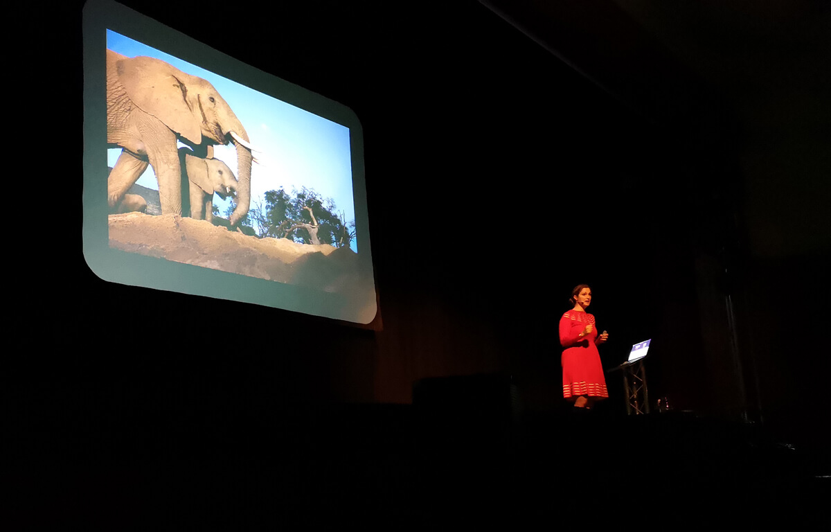Saba Douglas Hamilton on stage at The Mitchell Library in Glasgow. She is wearing a red dress and the projector screen behind her is showing elephants.