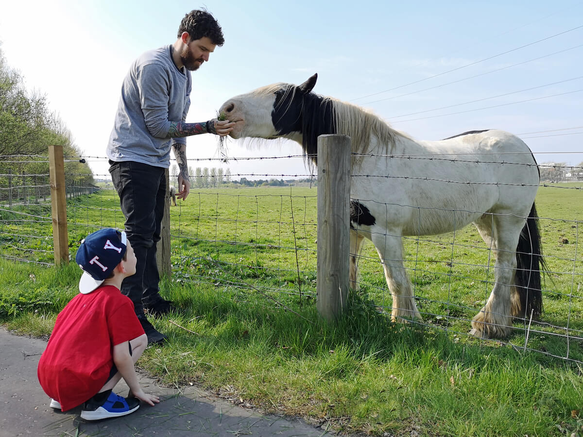 Allan and Emma's nephew feeding horses in a field.