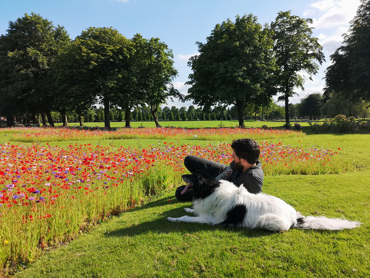 Allan and Toby the dog lying on the grass next to wildflowers.