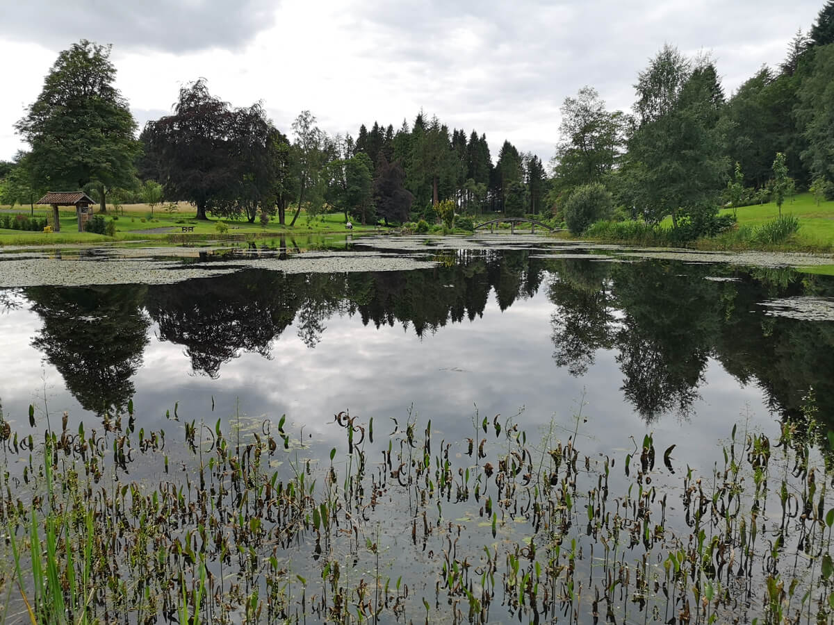 A view across the pond at Japanese Garden at Cowden.