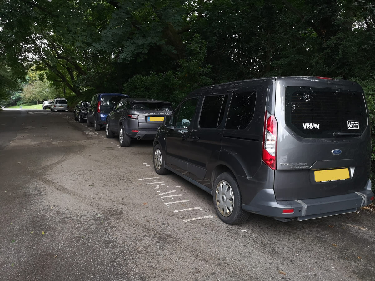 Emma's wheelchair accessible vehicle parked up beside a few other cars in Sefton Park.