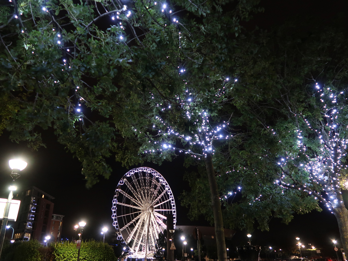 The Ferris Wheel and trees lit up with twinkling lights at night.