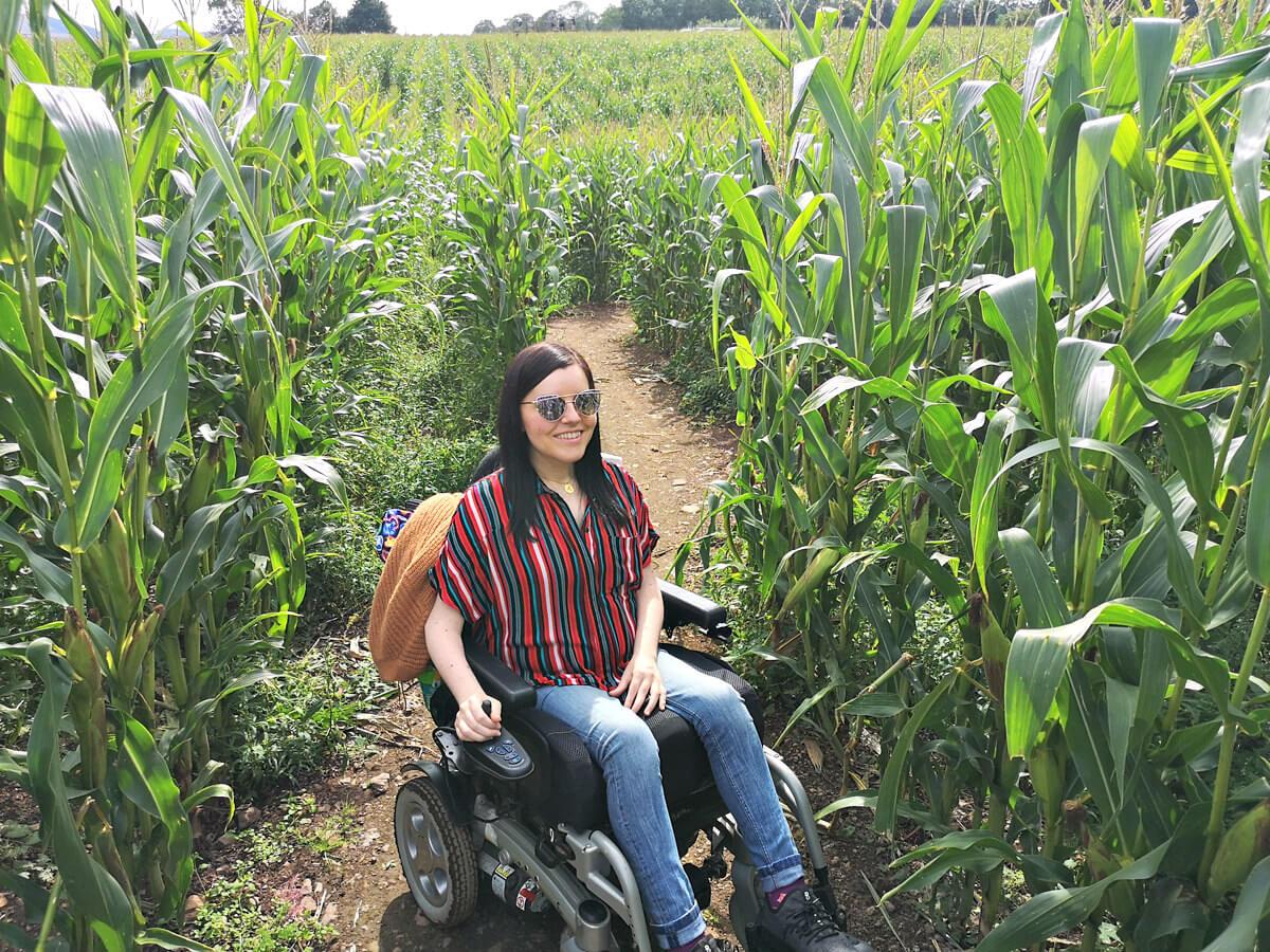 Emma driving through the Mega Maze at Cairnie Fruit Farm.