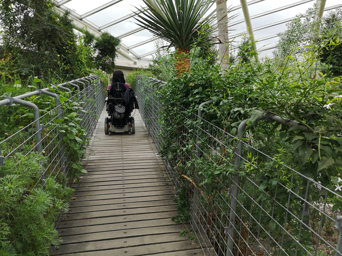 Emma driving across a wooden bridge in her wheelchair inside the glass house at National Botanic Garden of Wales