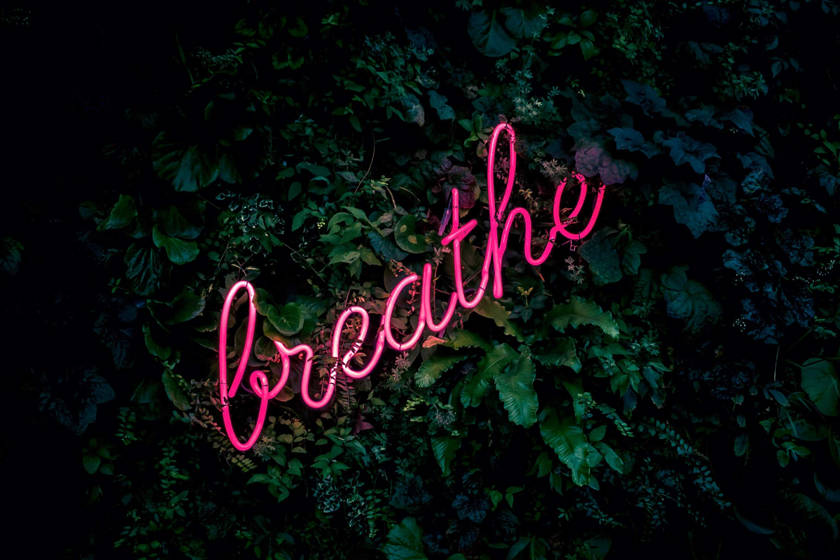 "A pink neon sign with the word ""breathe""."