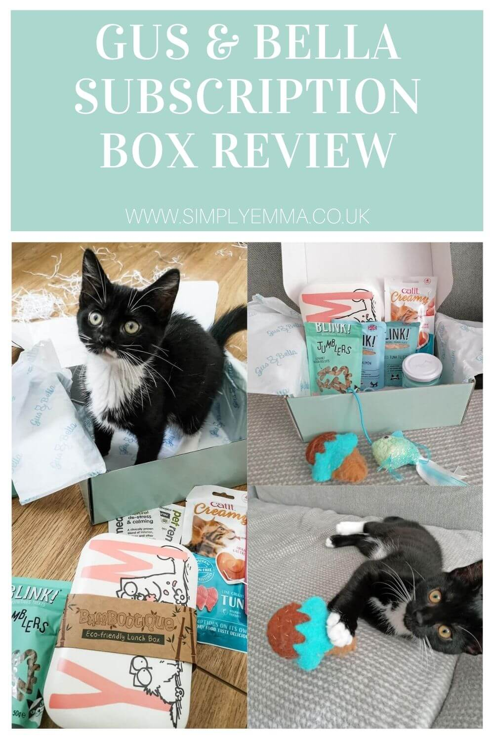 Gus & Bella Cat Subscription Box Review