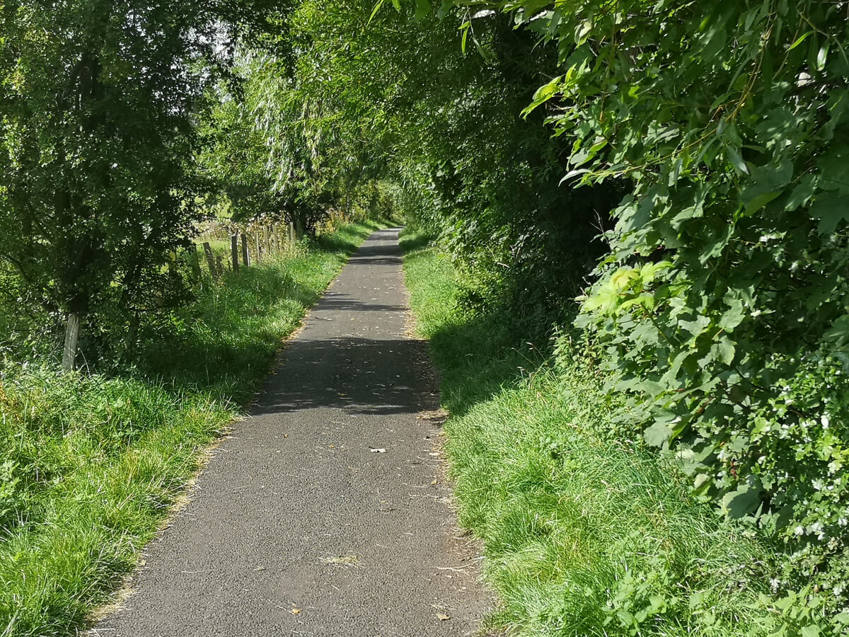 A flat tarmac path with trees lining each side.