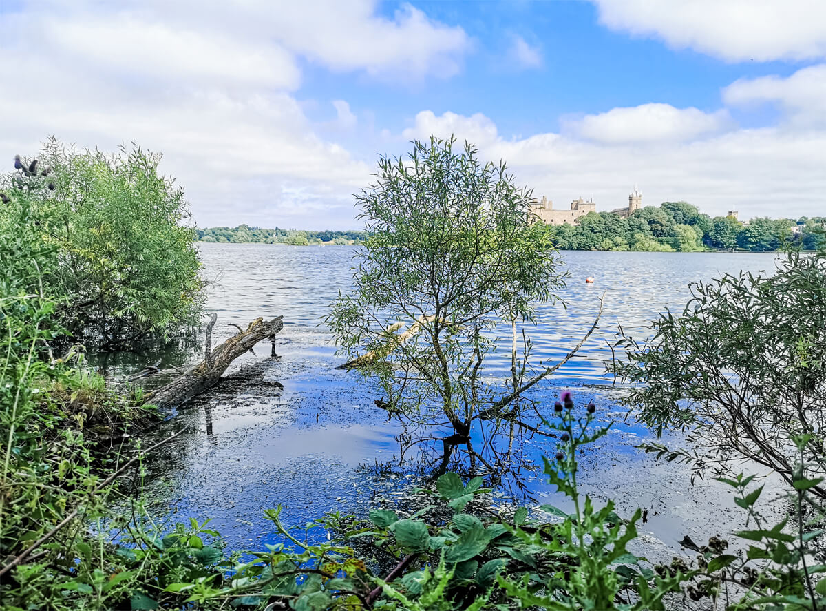 The loch and Linlithgow Palace in the background.