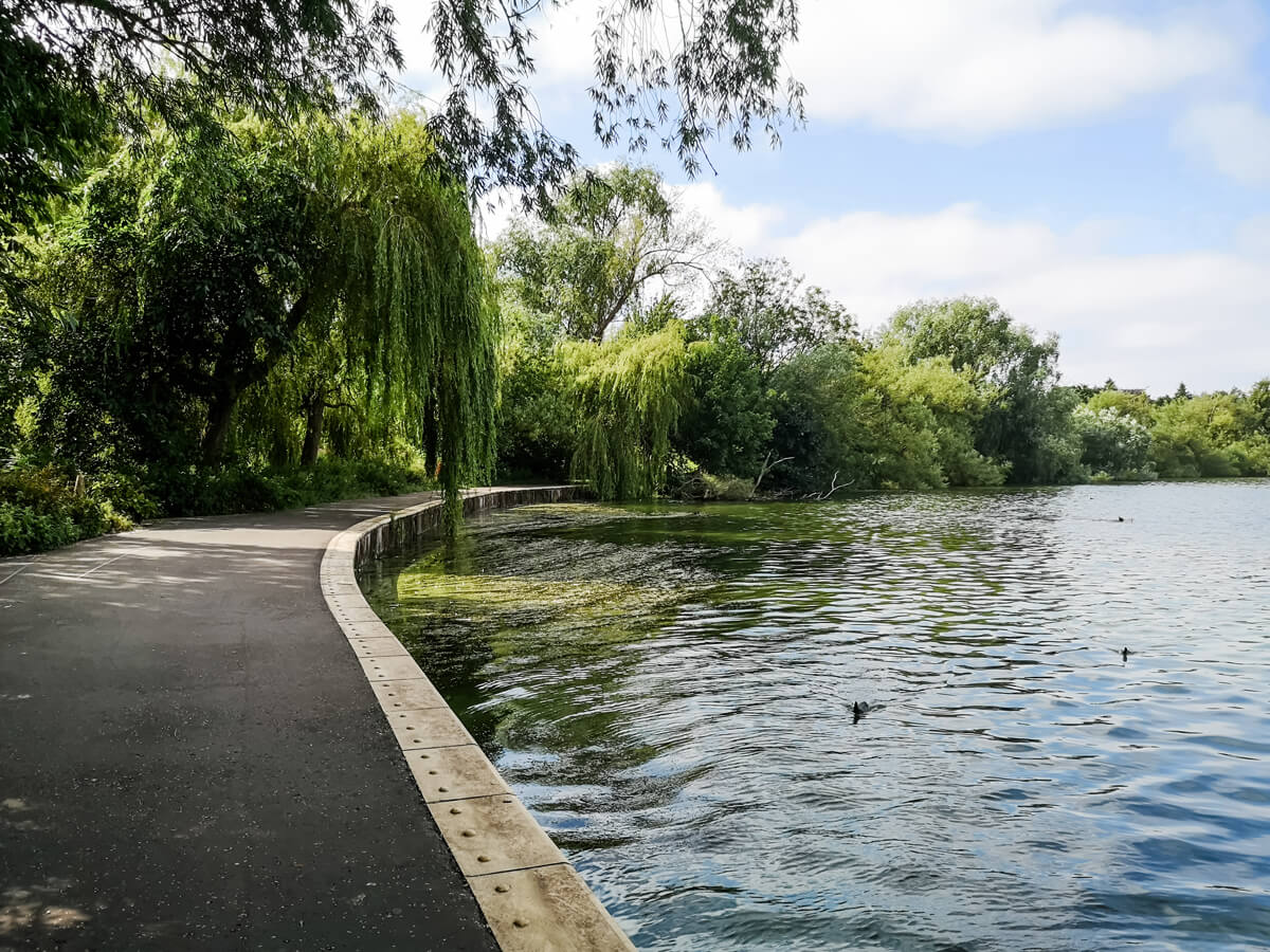 A low level shot of the loch and path with willow trees overhanging in the background.