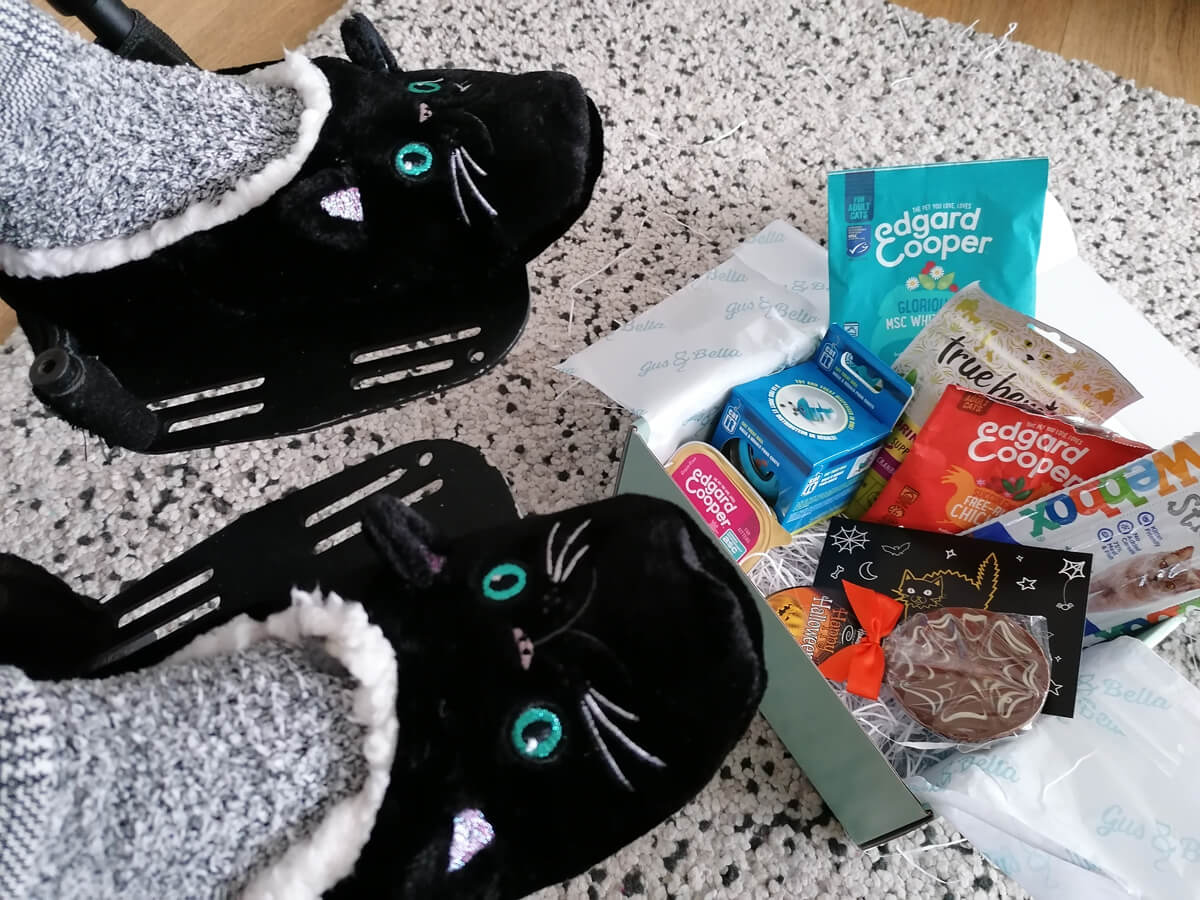 A view looking down at Emma's legs and feet sitting in her wheelchair. Emma is wearing black and white check trousers and fluffy black cat slippers. Laying on the rug at the bottom of Emma's feet is the Gus & Bella cat box.