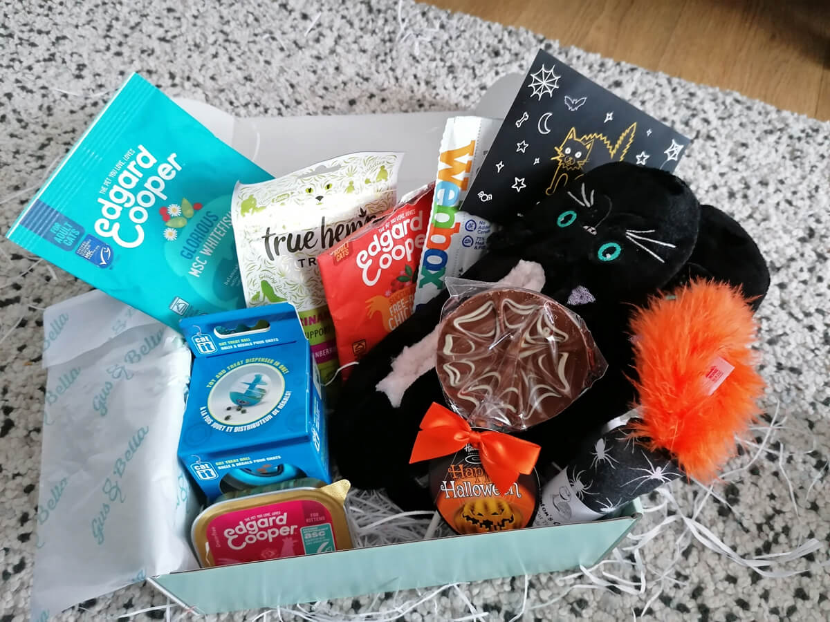 A close up of the items inside the Gus & Bella  Cat Lover Subscription Box | 'Feline Spooky' Halloween Special box.