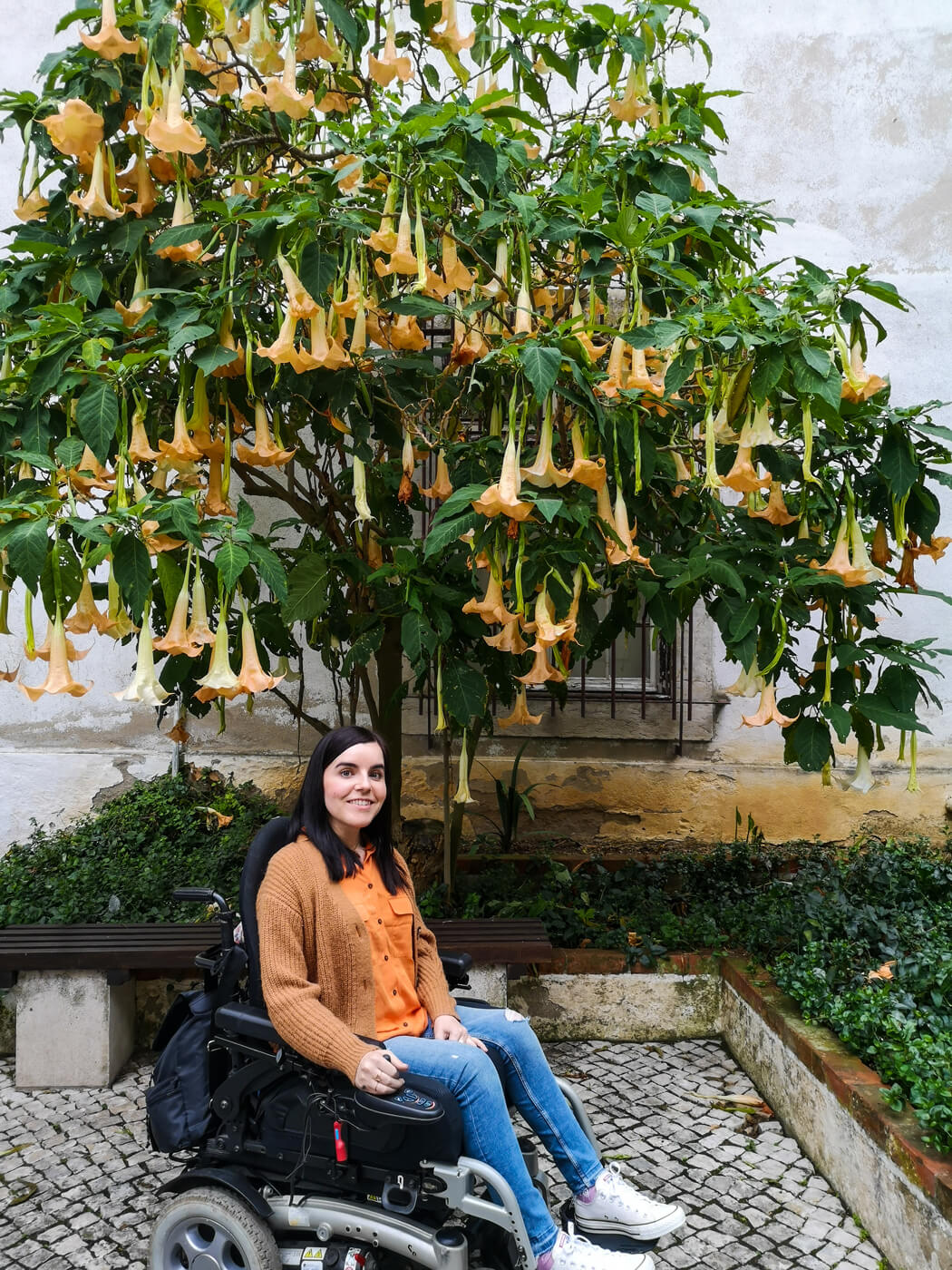 Emma sitting in her power wheelchair below a green tree with pretty orange flowers. Emma is wearing blue skinny jeans, an orange shirt and burnt orange cardigan and white converse shoes. Emma is smiling at the camera.