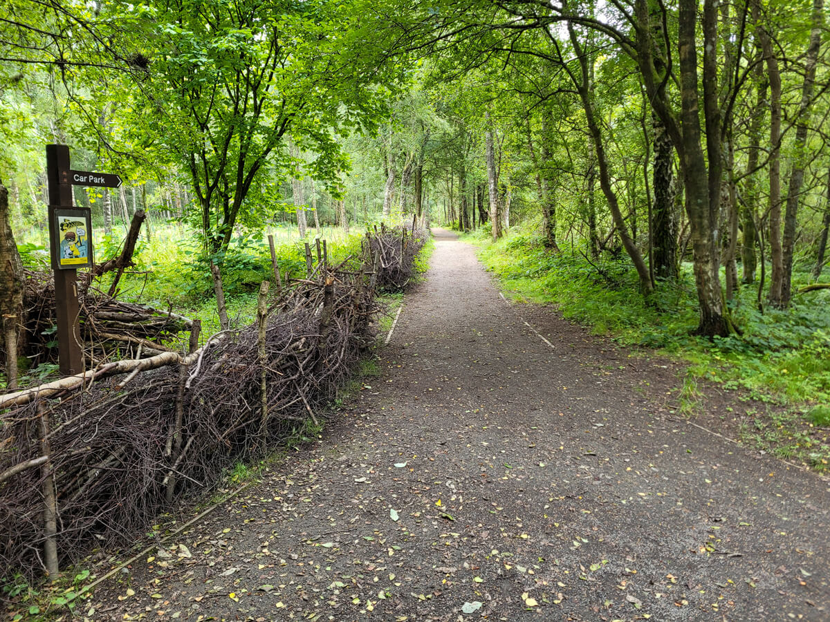 A view of the wheelchair accessible paths at Doune Ponds.