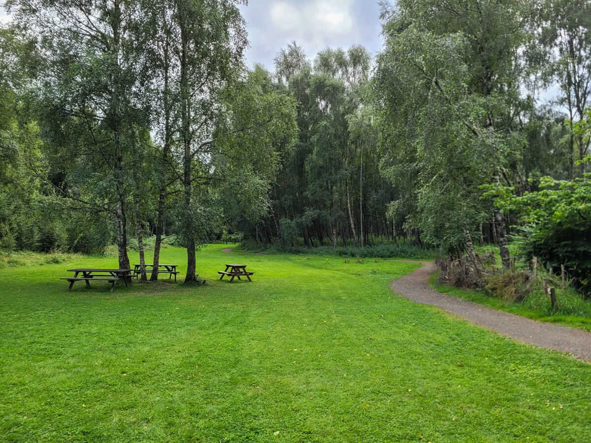 Doune Ponds meadow and picnic area.