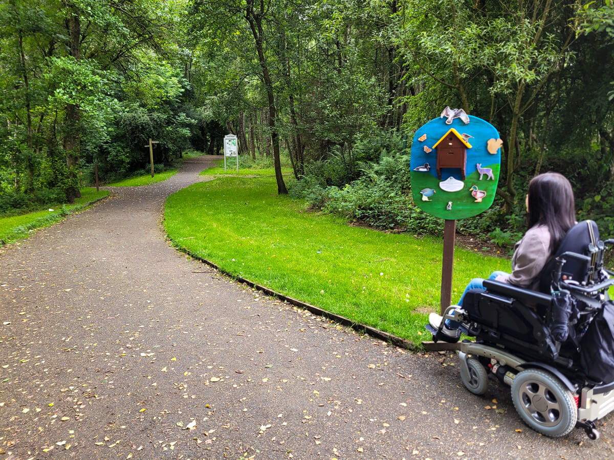 Emma sitting in her wheelchair with her back to the camera. She is looking at a colourful wooden sign showing wooden animal cutouts.