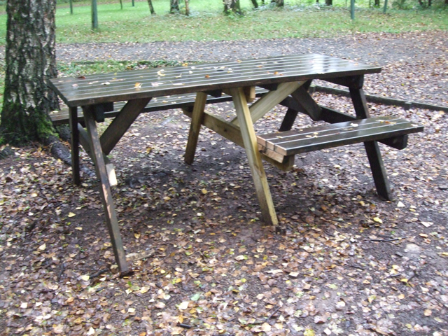 Wheelchair accessible picnic table next to a tree. There are leaves on the ground surrounding the table.