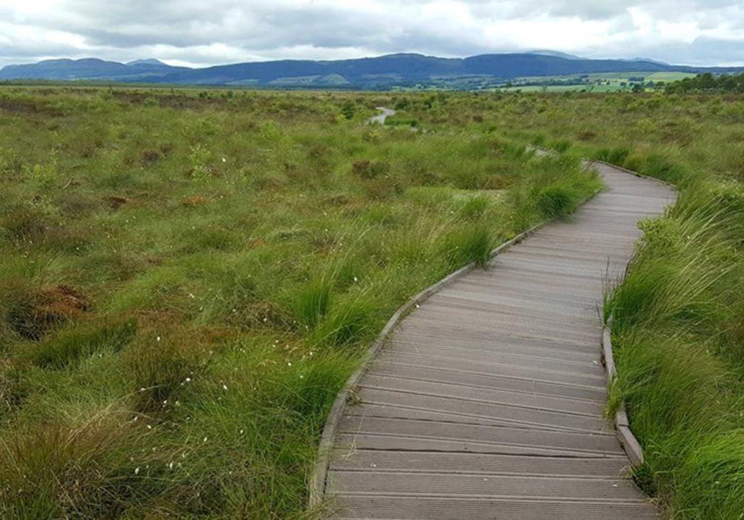 Accessible-Scottish-Walks-Flanders-Moss-min