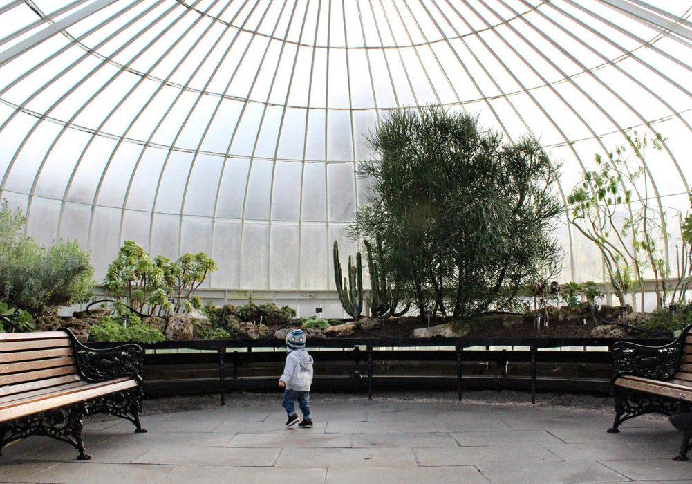 Glasgow Botanic Gardens wheelchair access