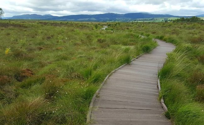 Accessible-Scottish-Walks-Flanders-Moss-min