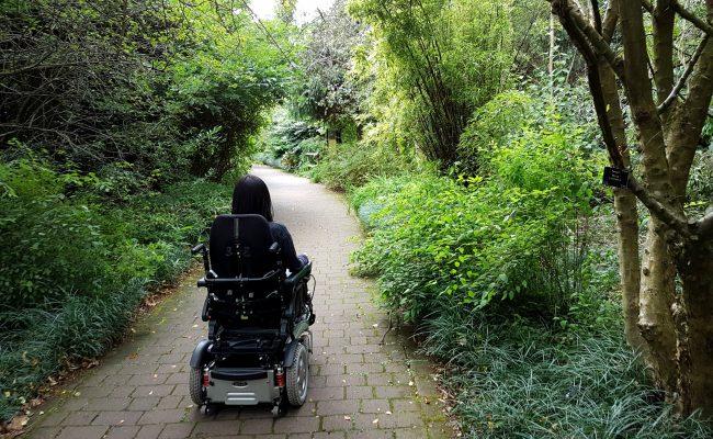 Walking vs Wheelchair