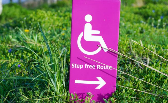 A pink sign stuck in the grass with a white wheelchair symbol. Text reads